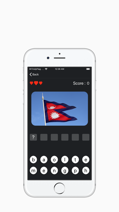 Choose Flag X screenshot 2