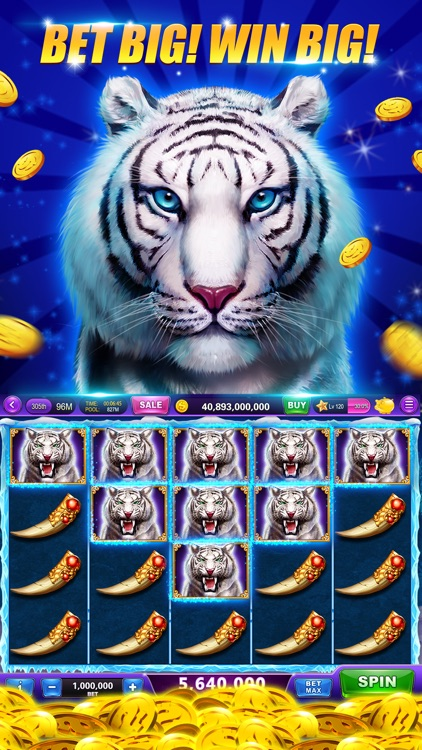 Slots-Heart of Diamonds Casino screenshot-5