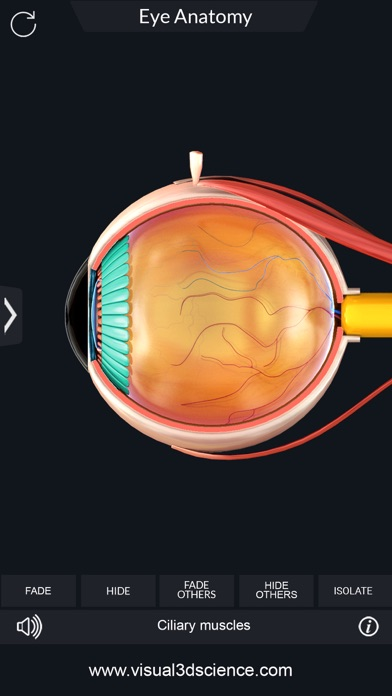 My Eye Anatomy screenshot 5