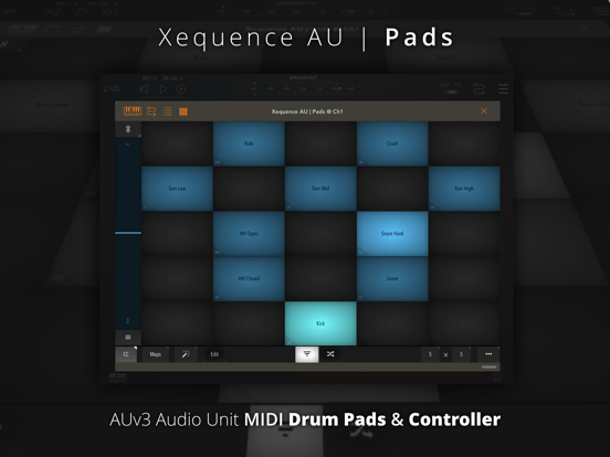 Xequence AU   Pads