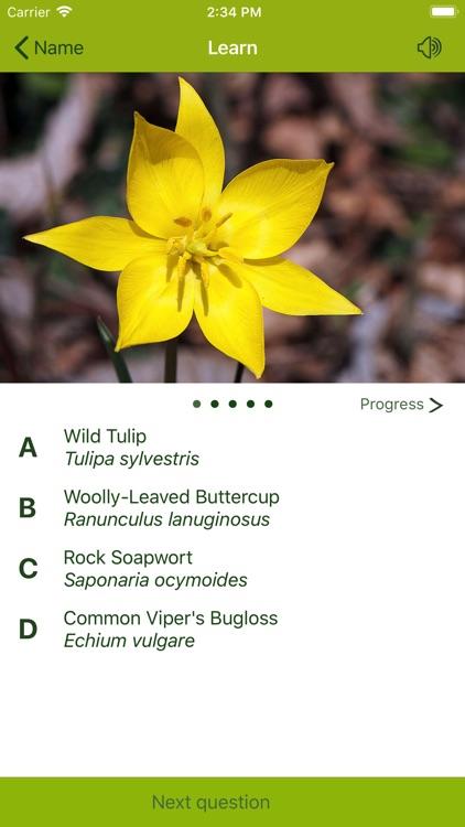 Wildflower Finder Switzerland screenshot-5