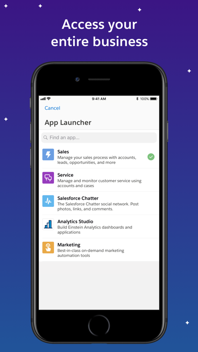 Salesforce review screenshots