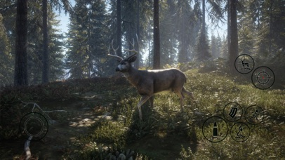 HUNTER 2019 screenshot 8