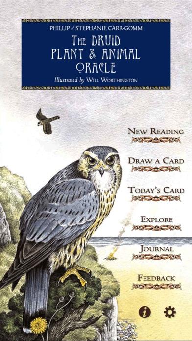 Druid Oracle Cardsのおすすめ画像1