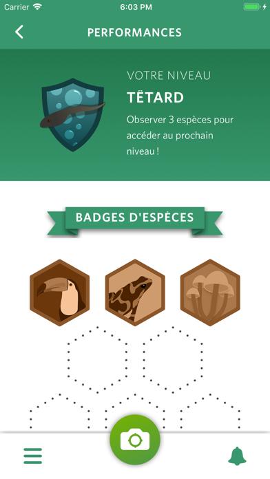 Seek by iNaturalist sur pc