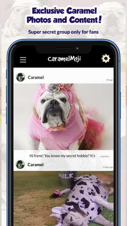 CaramelMoji - Bulldog Stickers screenshot-4
