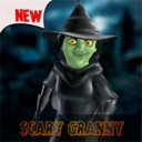 Scary Granny – House of Fear