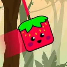 Activities of Spider Fruit Ninja