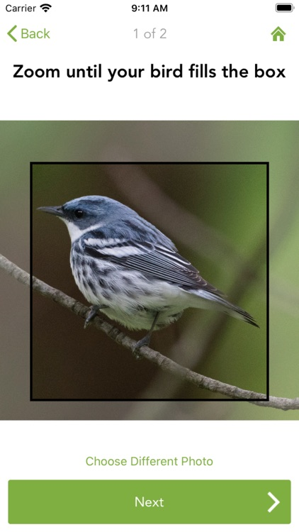 Merlin Bird ID by Cornell Lab screenshot-6