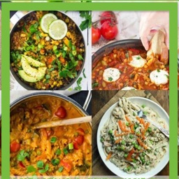 Vegan Recipes-Offline