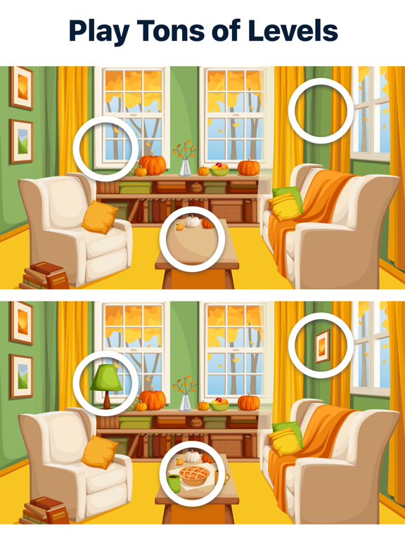 iPad Image of Differences - Find them All