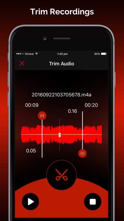 Quick Recorder Pro screenshot-1