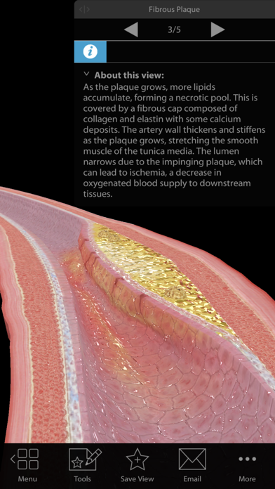 Physiology & Pathology screenshot 2