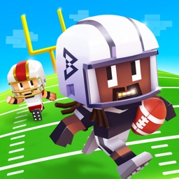 Marshawn Lynch Blocky Football