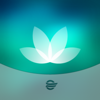HealtheLife - Cerner Corporation