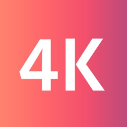 Real or Fake 4K