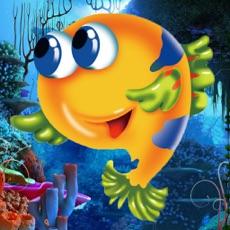 Activities of Aquarium Fishing