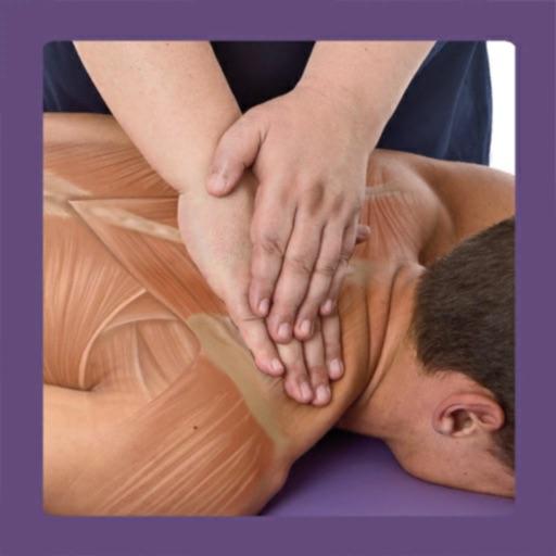 Anatomy & Sports Massage AR