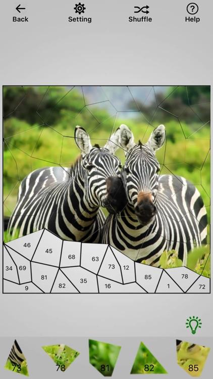 Photo Jigsaw Puzzle Maker screenshot-3