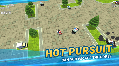 Thief vs Police: Hot Pursuit screenshot 1