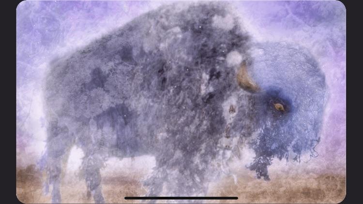 Animal Totems Empowerment Deck screenshot-4
