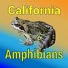 点击获取California Amphibians