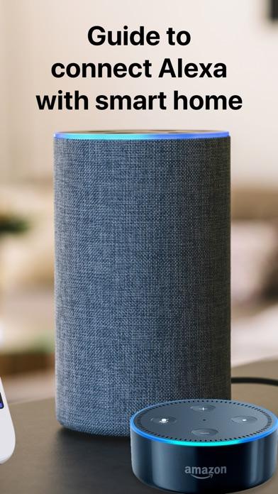 Setup for Alexa Echo Dot app