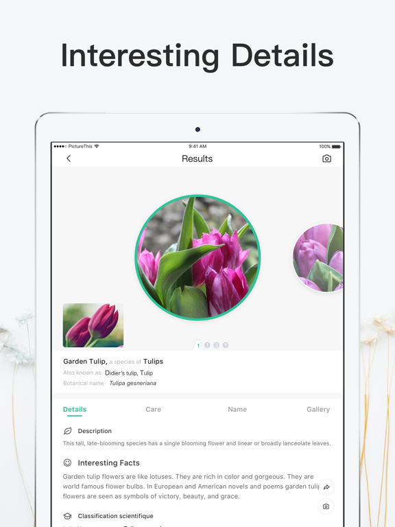 iPad Image of PictureThis - Plant Identifier