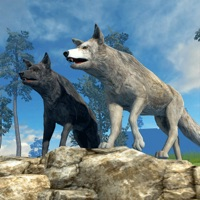 Codes for Wolves of the Forest Hack