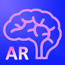 AR Human brain
