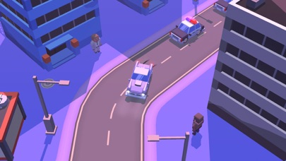 Nice City: Drive & Shoot screenshot 2