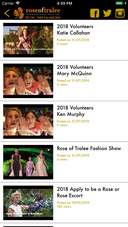 Rose of Tralee screenshot-5