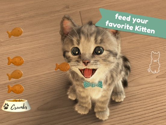 Little Kitten -My Favorite Cat Screenshots