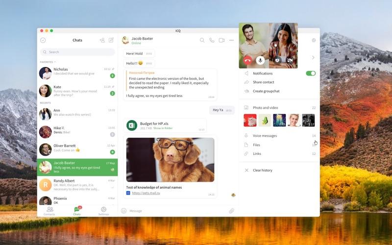 ICQ Screenshot