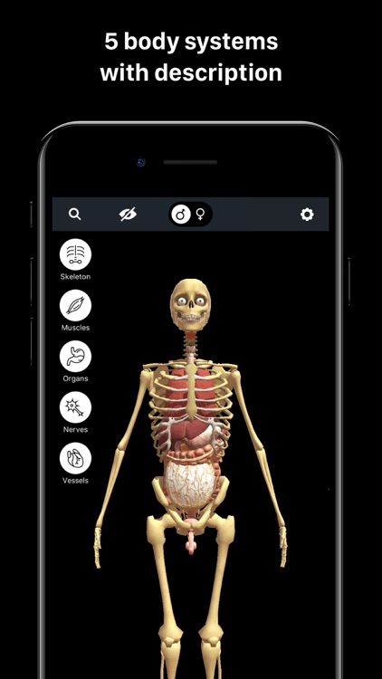 Discover Human Body AR screenshot-2