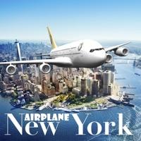 Codes for New York Flight Simulator Hack