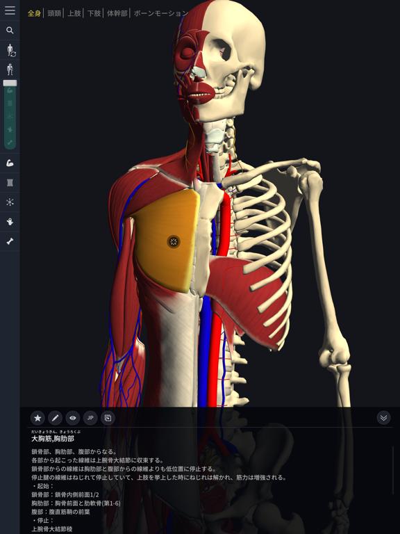 3D運動解剖学 teamLabBodyのおすすめ画像2