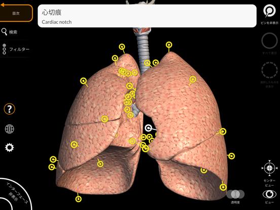 解剖学 - 3Dアトラスのおすすめ画像5