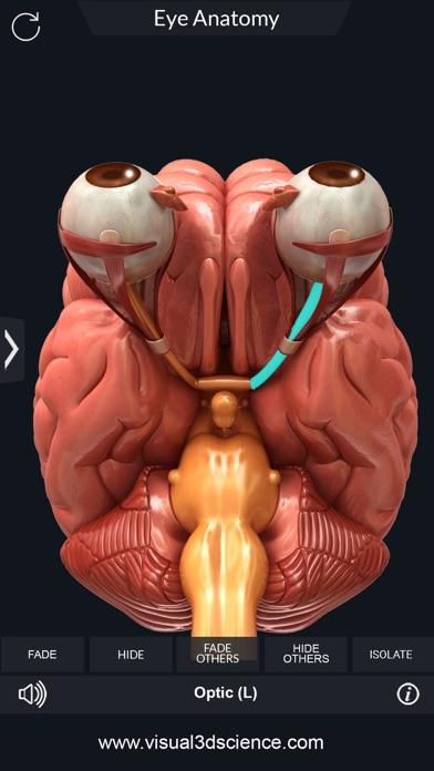 My Eye Anatomy screenshot 7