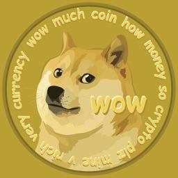 DogeChecker - Dogecoin Checker