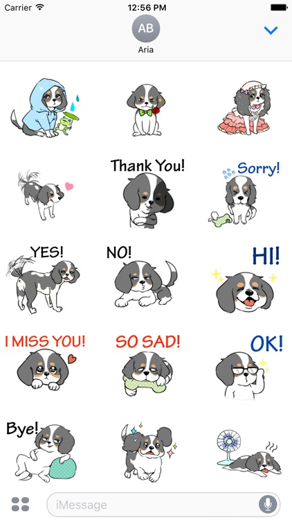Adorable Cavalier Dog Sticker