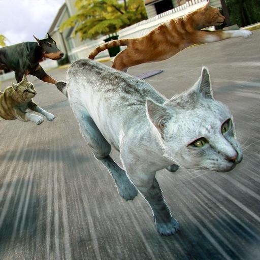 кот милый симулятор . бесплатно кошка веселье
