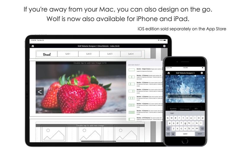 2_Wolf_Website_Designer_2.jpg