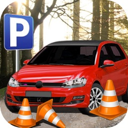 Parking Driving-Car Training