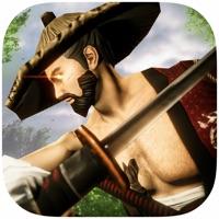 Codes for Samurai Assassin Hack n Slash Hack