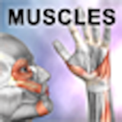 Learn Muscles app review