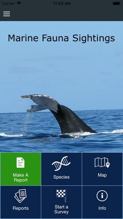 Whale Sightings WA