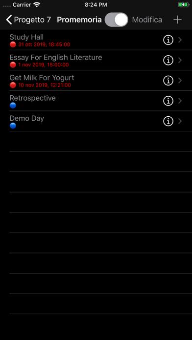 Screenshot of Organizzatore del progetto4