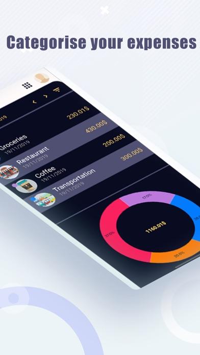 SP Budget screenshot #5