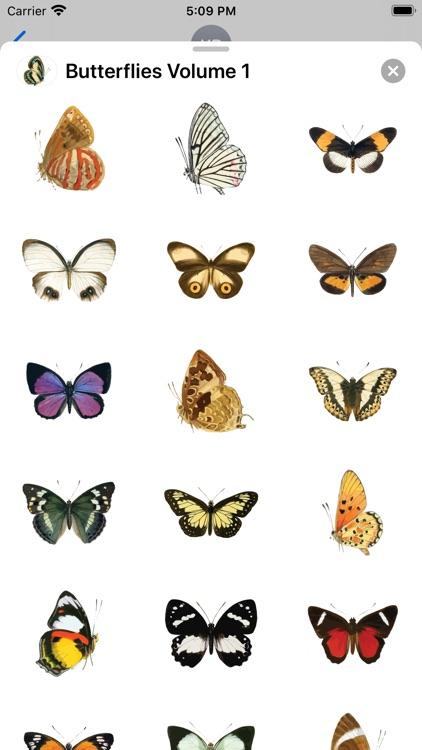 Butterflies Volume 1 screenshot-3